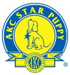 AKC S.T.A.R. Puppy test