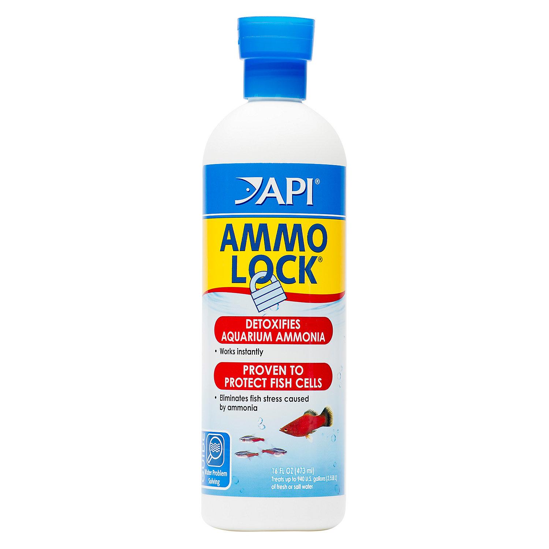 Api Ammo Lock Freshwater And Saltwater Aquarium Ammonia Detoxifier 16 Ounce Bottle