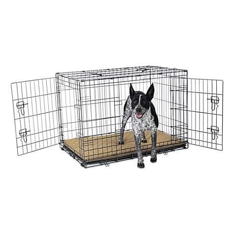 Petco Premium 2-Door Dog Crate, 36