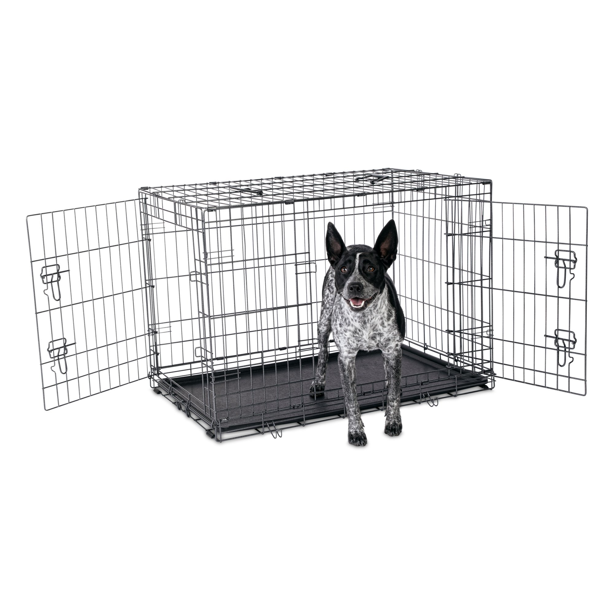 Petco Premium 2-Door Dog Crate, 42\