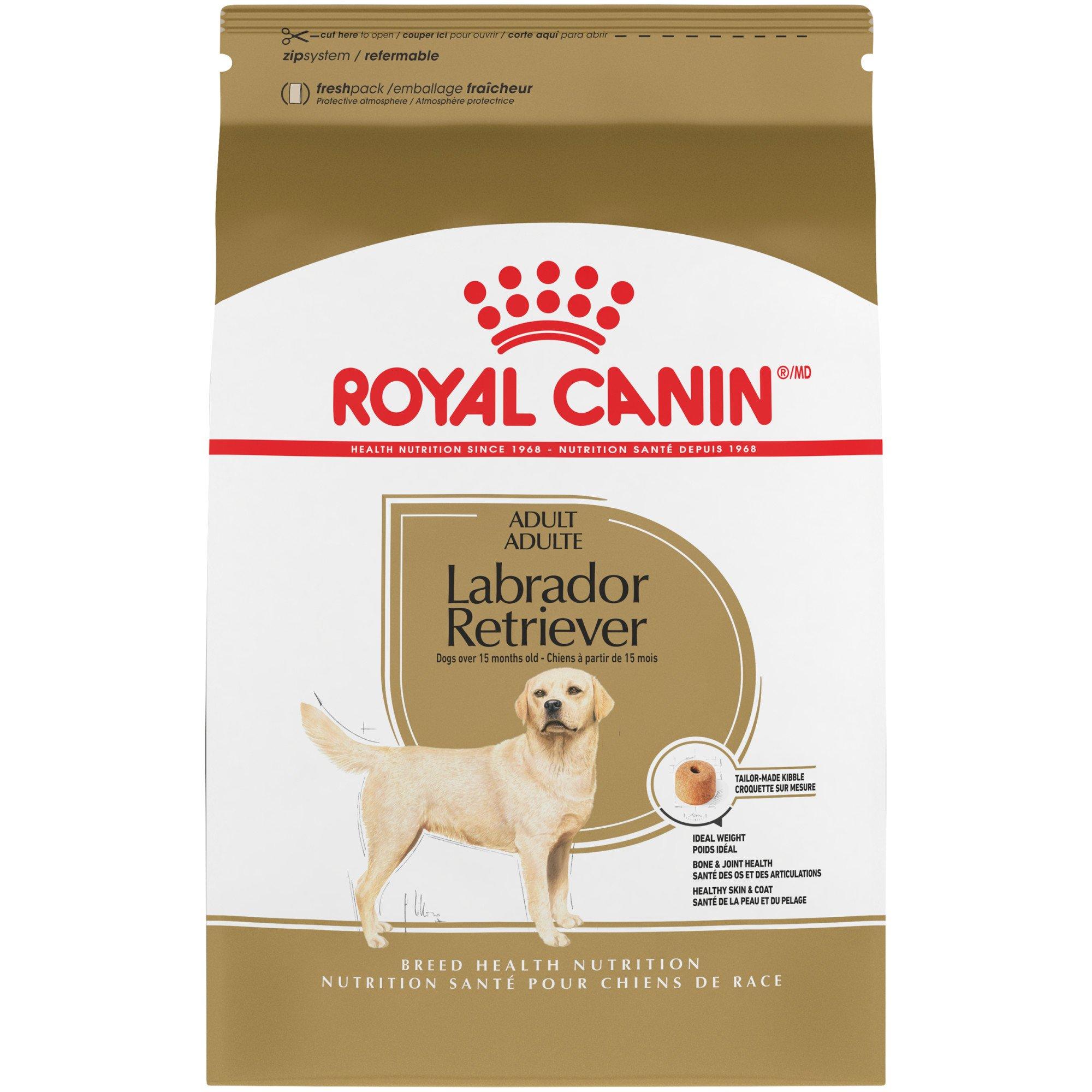 Royal Canin Breed Health Nutrition Labrador Retriever Adult Dry Dog Food