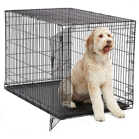 Midwest Icrate Single Door Folding Dog Crate 48 L X 30 W X 33 H