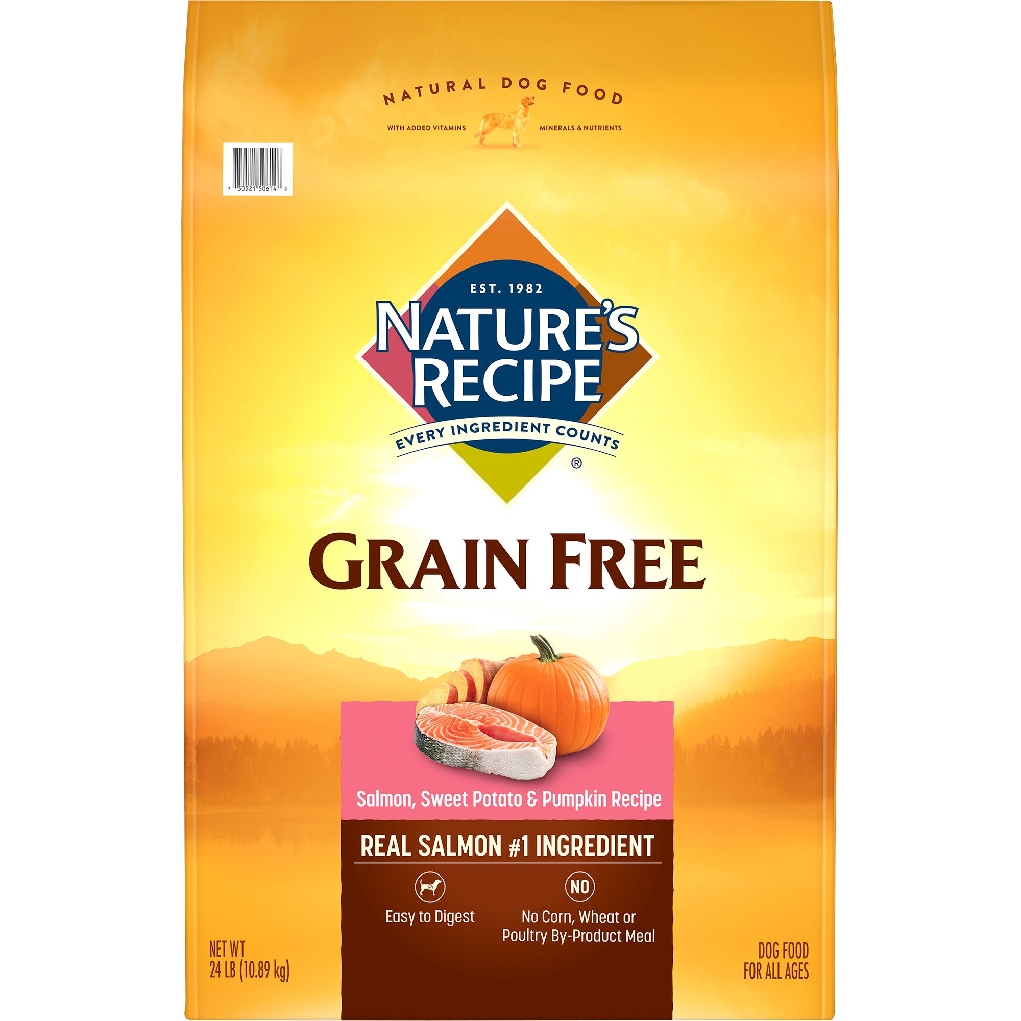 Natures Recipe Dog Food Salmon