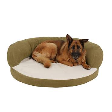 Carolina Pet Company Sage Green Orthopedic Bolster Personalized Dog Bed