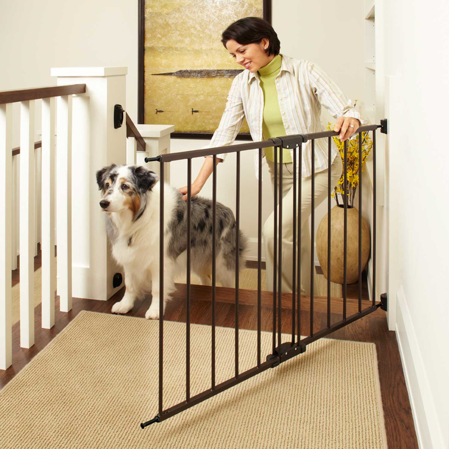 North States Easy Swing U0026 Lock Pet Gate