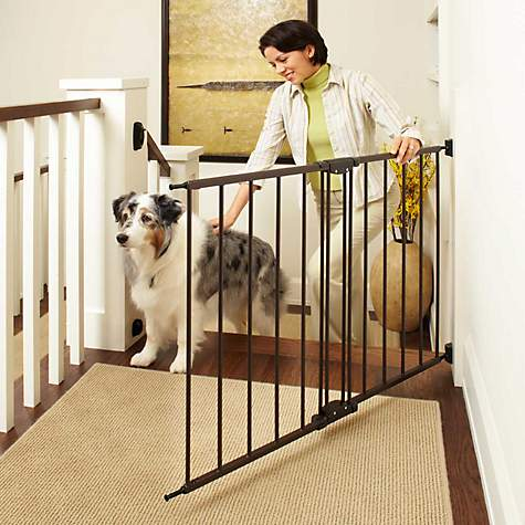 North States Easy Swing Amp Lock Pet Gate Petco