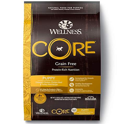 Wellness Core Natural Grain Free Puppy Health Recipe Dry