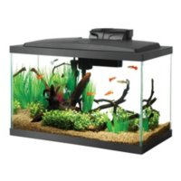 Deal for Aqueon Standard Glass Aquarium Tank 10 Gallon for 9.08