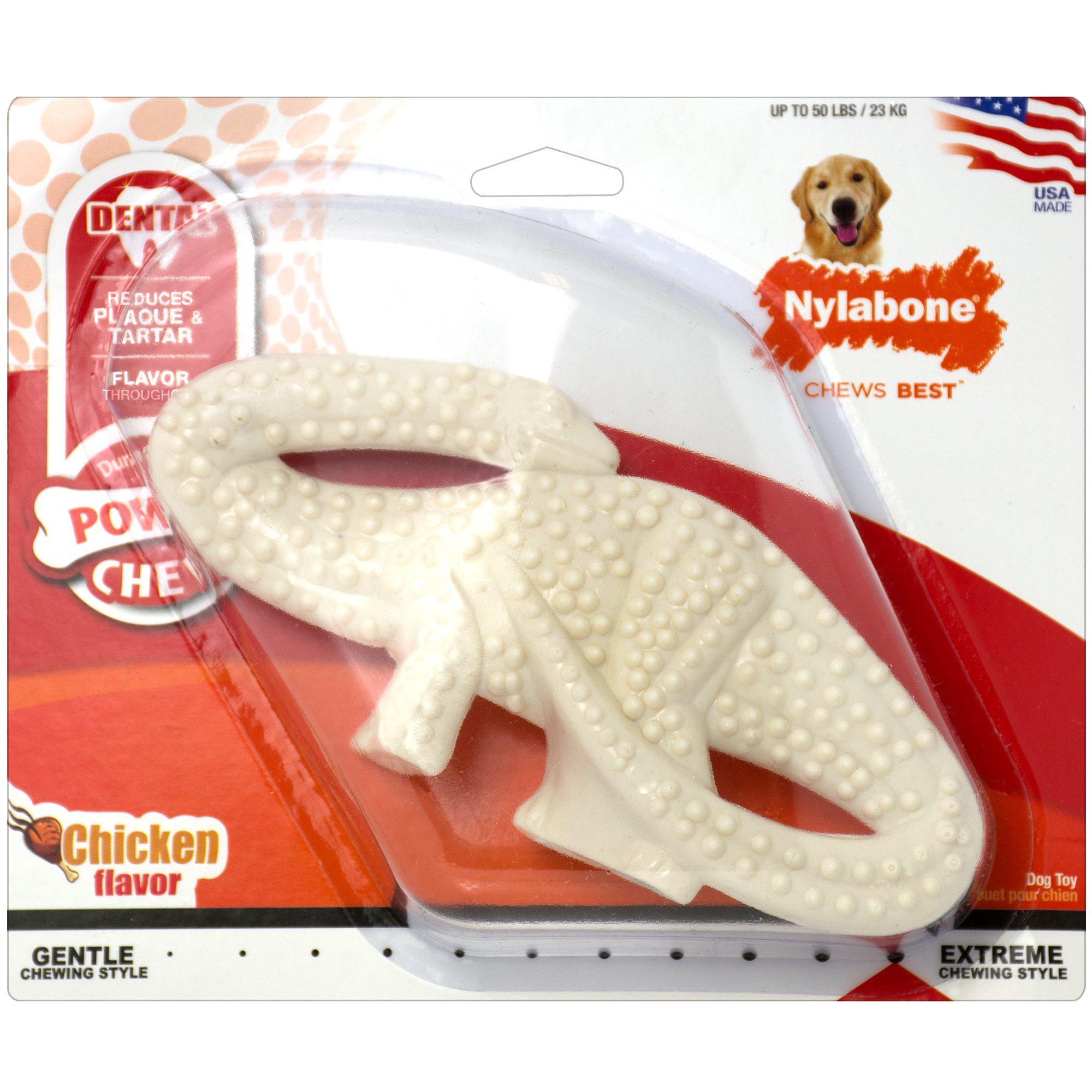 Nylabone Dental Dinosaur Chew, Small