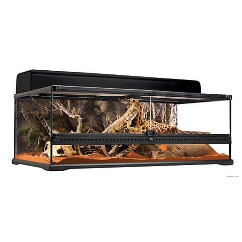 Exo Terra Large Low Terrarium, 36