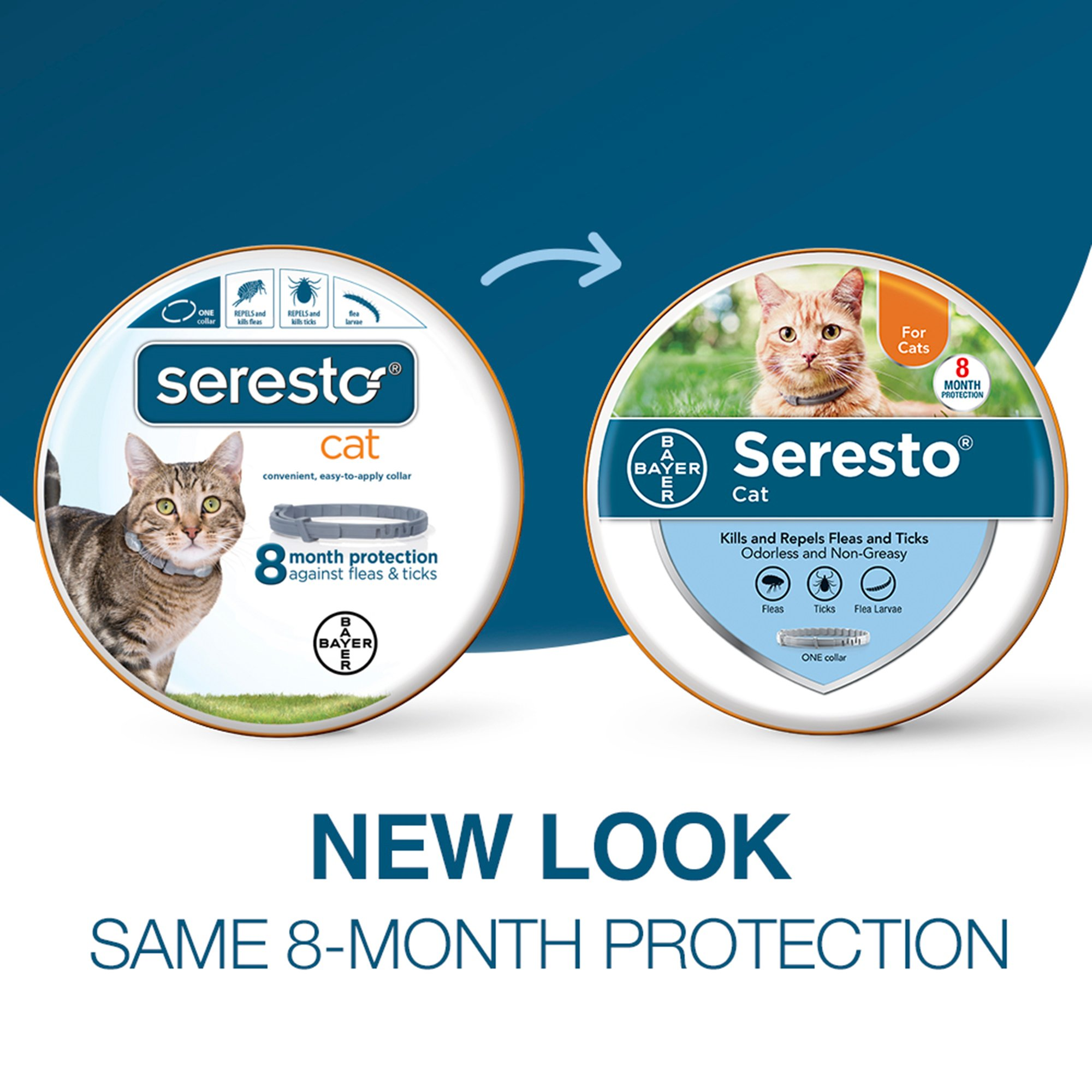 Seresto Flea and Tick Collar for Cats  Animed Direct