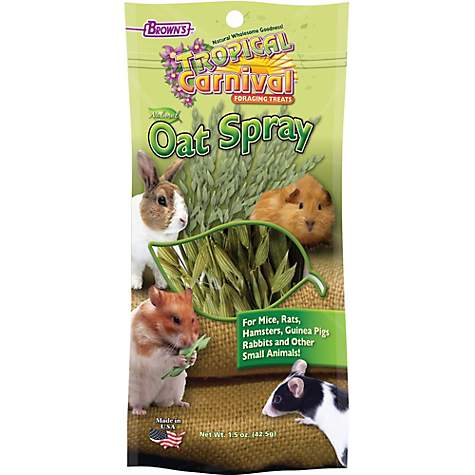Brown's Tropical Carnival Oat Spray Foraging Treats