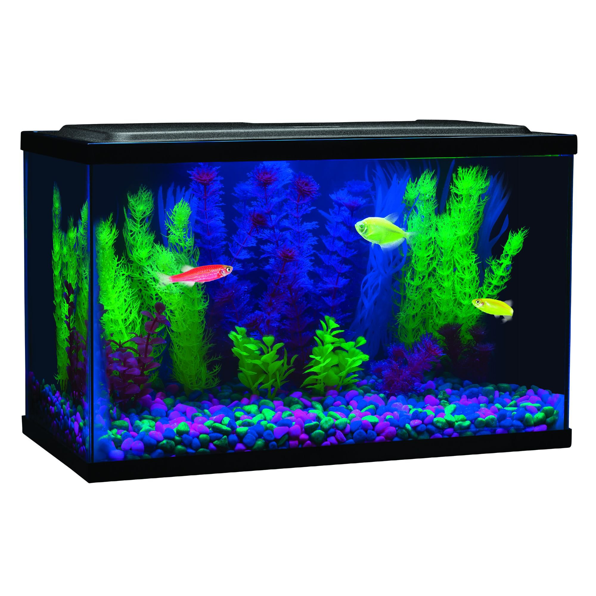 Glofish Blue Led Aquarium Waterproof Light 8 L Petco