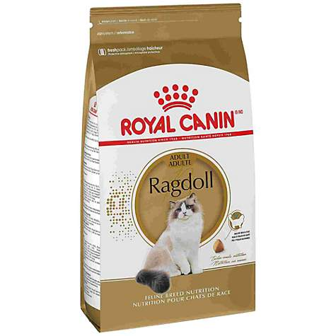 Royal Canin Feline Breed Nutrition Ragdoll Dry Cat Food