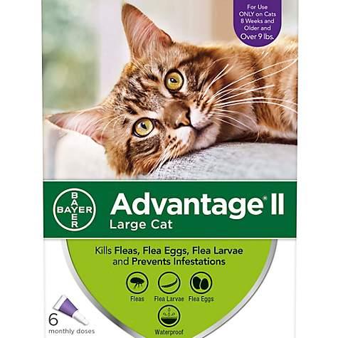 Advantage Ii Cat Flea Medicine