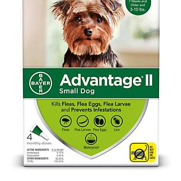 Advantage II Once-A-Month Topical Flea Treatment for Dogs & Puppies 3 to 10 lbs.