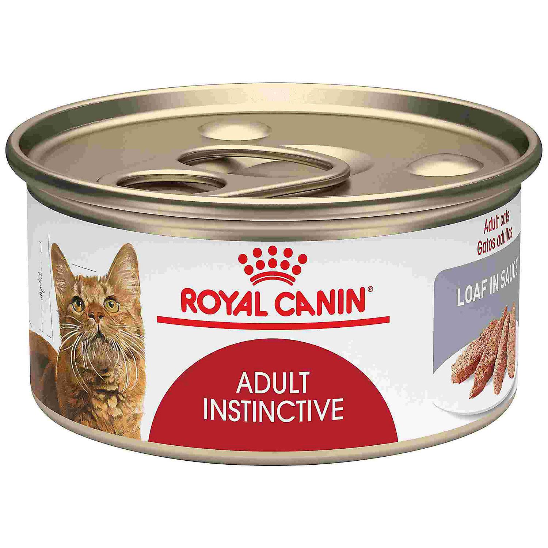Royal Canin Canned Upc Amp Barcode Upcitemdb Com