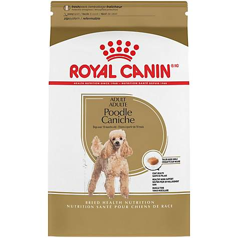 Royal Canin Breed Health Nutrition Poodle Adult Dry Dog Food 10 Lbs