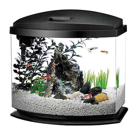 Aqueon Minibow Led Desktop Fish Aquarium Kit In Black Petco