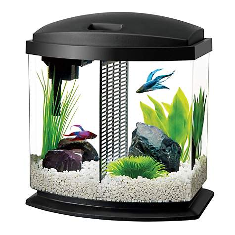 Aqueon Bettabow Led Desktop Fish Aquarium Kit Petco