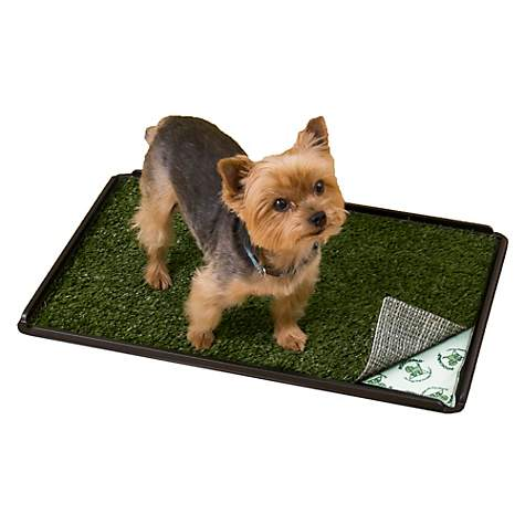 PoochPads Indoor Turf Dog Potty Plus | Petco