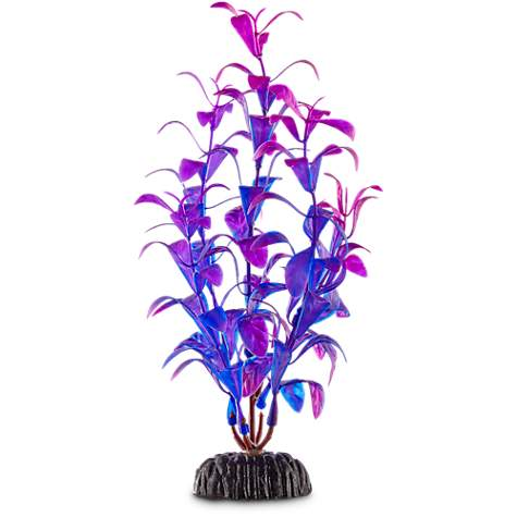 Imagitarium Purple & Blue Foreground Aquarium Plant