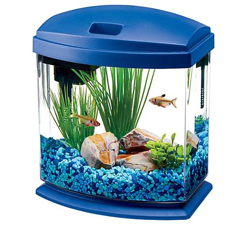 Aqueon MiniBow Blue LED Desktop Fish Aquarium Kit  473930ca4324