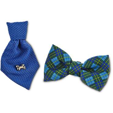 Bond & Co. Blue Bowtie Set for Small Dogs