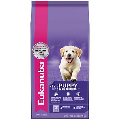 Eukanuba Puppy Food Petco