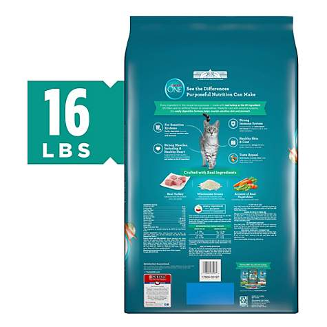 Purina ONE Natural Sensitive Skin & Stomach Formula Dry Cat Food, 16 lbs ,  Bag