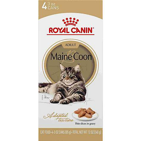 Royal Canin Maine Coon Breed Thin Slices in Gravy Adult Wet Cat Food  Multipack, 3 oz , Count of 4
