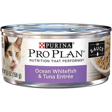 Purina Pro Plan Ocean Whitefish & Tuna Entree in Sauce Cat Food