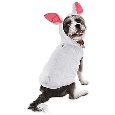 Bond & Co Bunny Costume Dog Hoodie