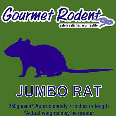 Frozen Jumbo Rat
