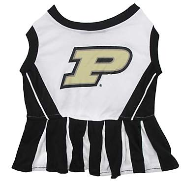 Pets First Purdue Boilermakers Cheerleading Outfit
