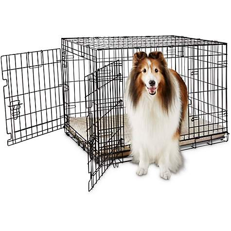 You & Me 2-Door Folding Dog Crate