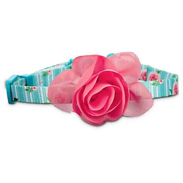 Bond & Co. Pink Rose Print Cat Collar in Blue