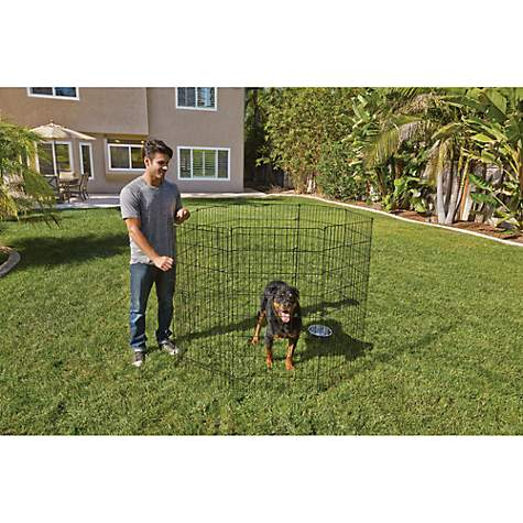 You Me Adjustable Exercise Pen Petco