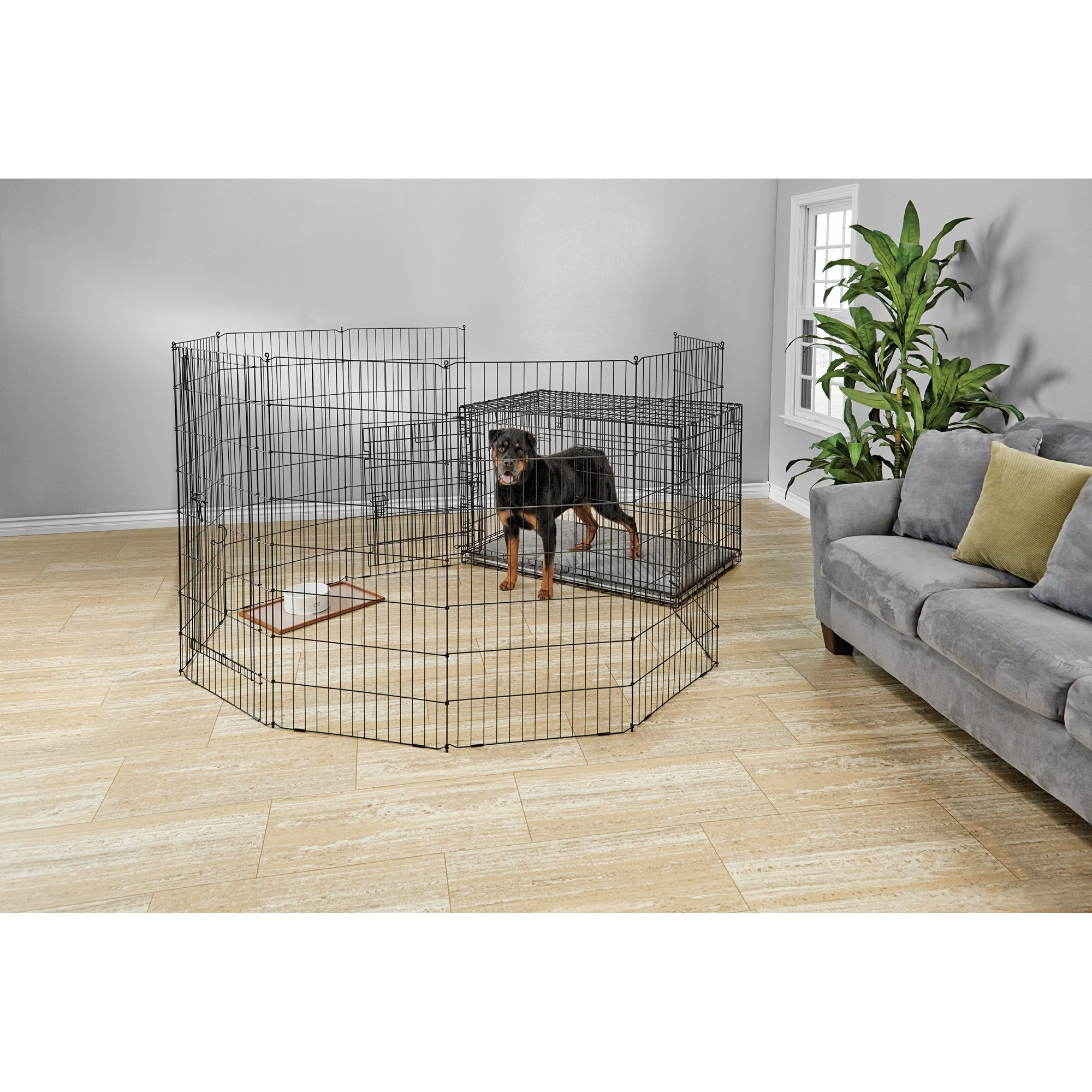You & Me 2-Door Folding Dog Crate | Petco