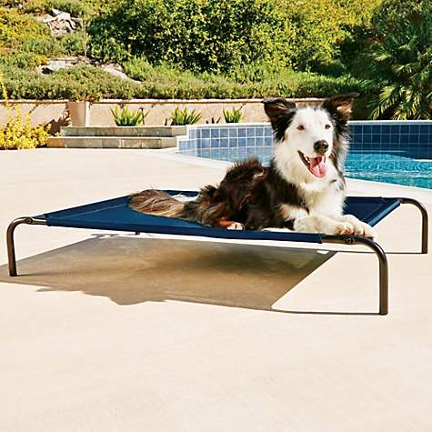 Good2Go Cooling Cot for Dogs