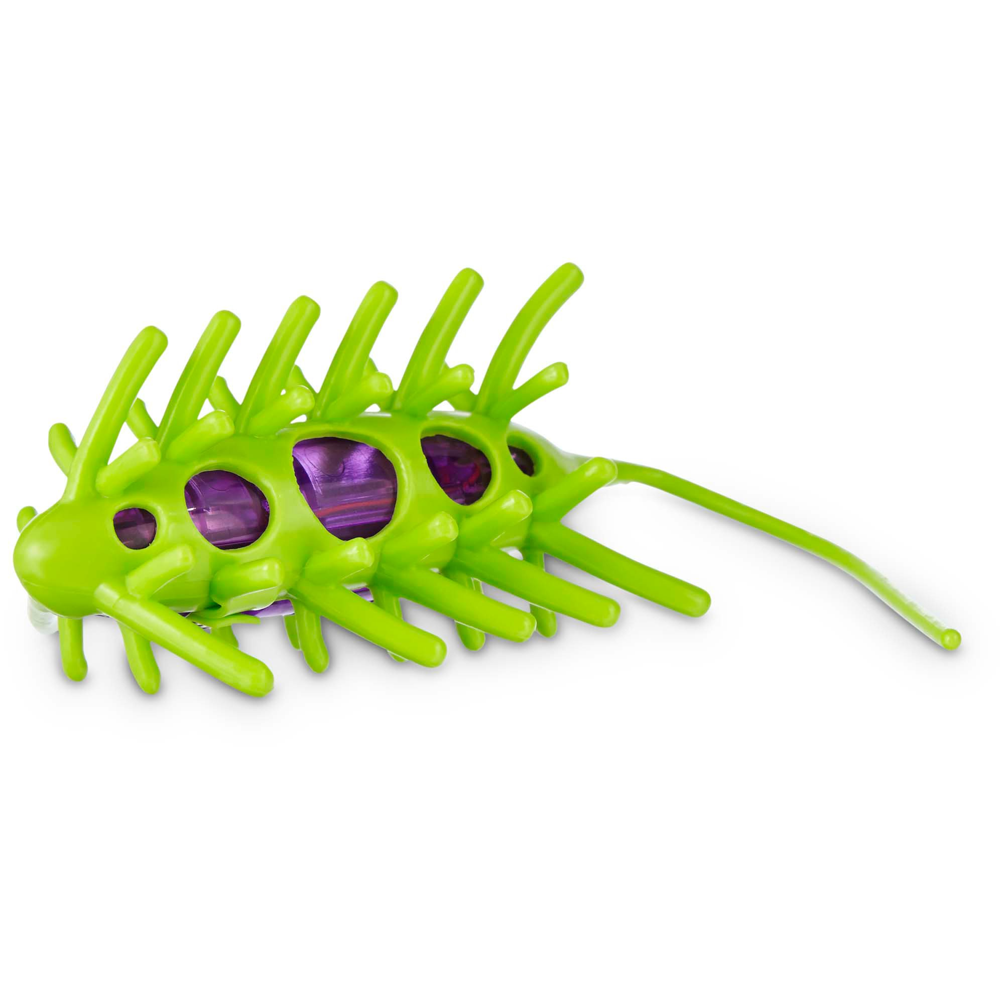 Leaps Amp Bounds Wiggle Bug Cat Toy Petco