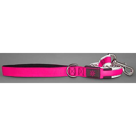 Good2Go LED Light-Up Leash for Dogs in Pink