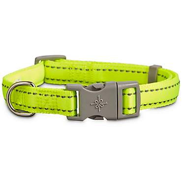 Good2Go Reflective Adjustable Padded Dog Collar in Yellow