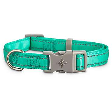 Good2Go Reflective Adjustable Padded Dog Collar in Turquoise