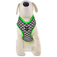 Good2Go Light Up Reflective LED Harness for Dogs in Green