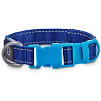 Good2Go Light Up Reflective LED Collar for Dogs in Blue