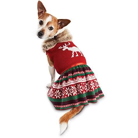 Time for Joy Snow Day Fair Isle Dog Dress | Petco