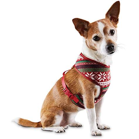 Time for Joy Fair Isle Dog Harness | Petco