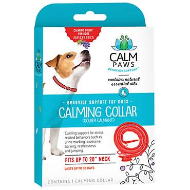 Calm Paws Dog Calming Collar