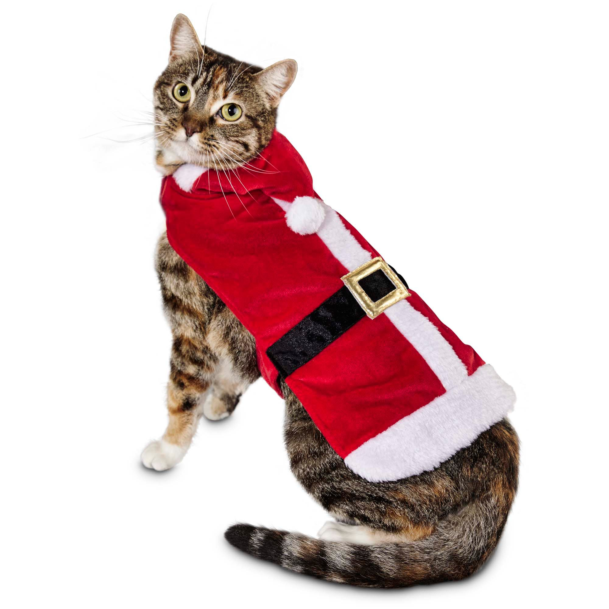 Cat Clothes Apparel & Outfits Clothes for Cats